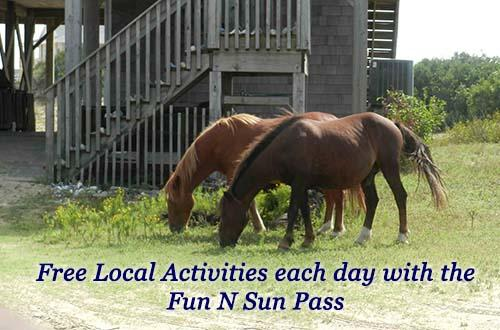 Free Daily Activities
