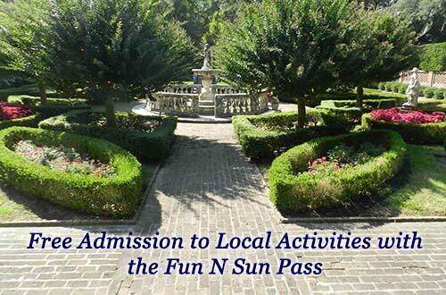 Free Activities