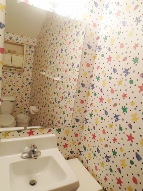 Half bathroom/dwn stairs
