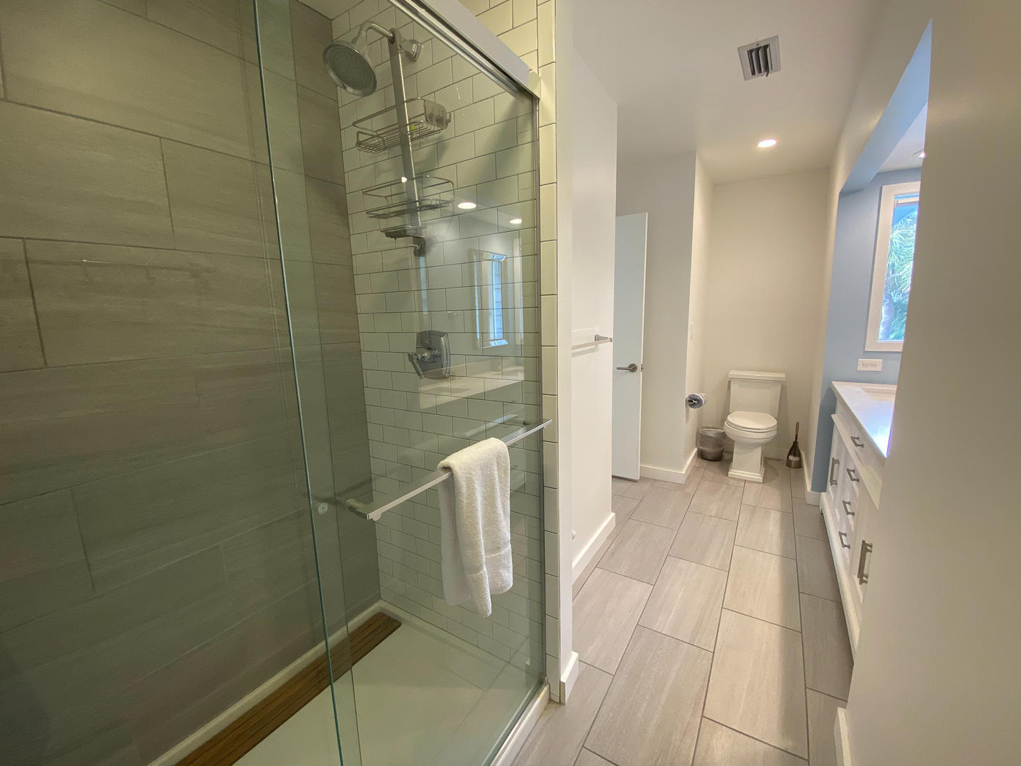 Master bath, stand up shower