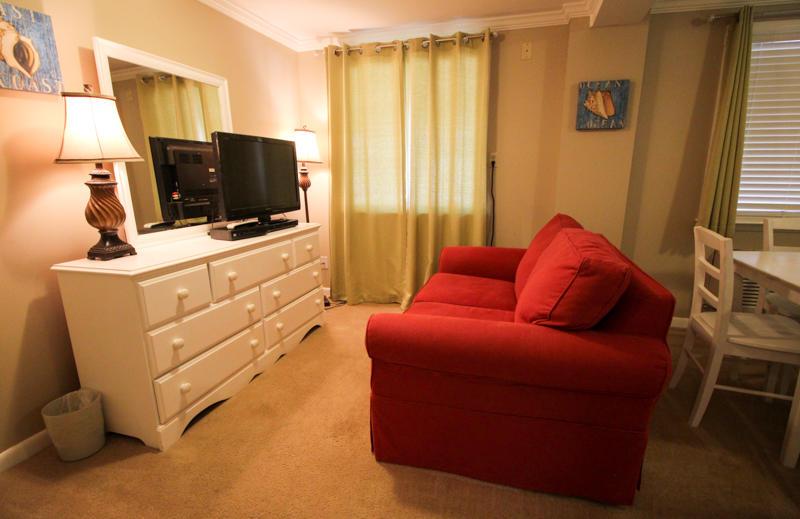 Living Area - Bottom Floor
