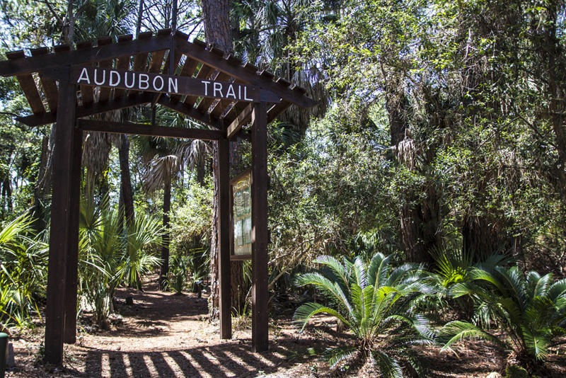 Explore nature with a walk on the Audubon Trail.