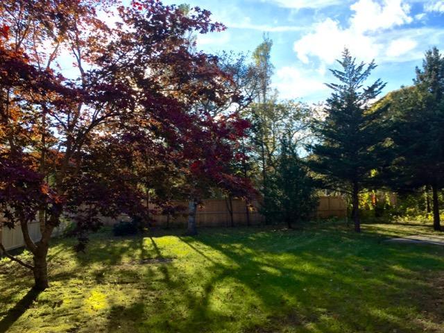 wonderful private yard