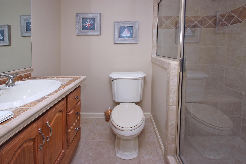 Guest bath - ground level