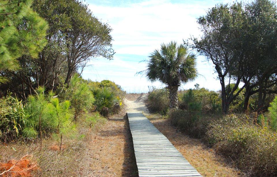 Boardwalk to beach in backyard