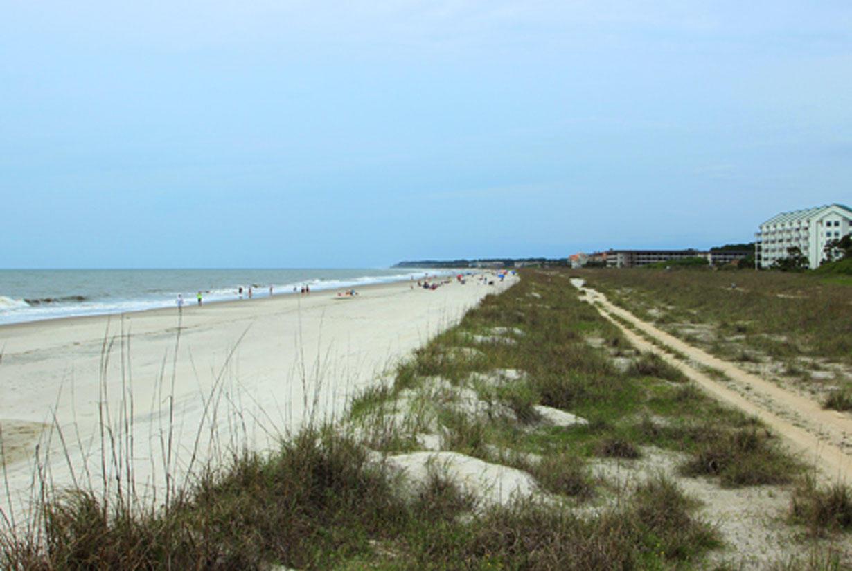 Beach in back of Sanddollar