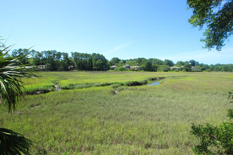 Marsh view from villa