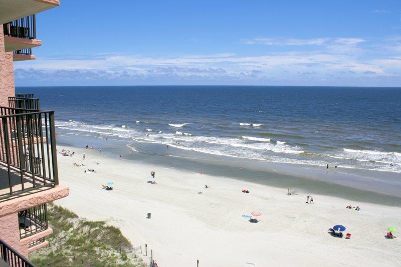Carolina Reef 803