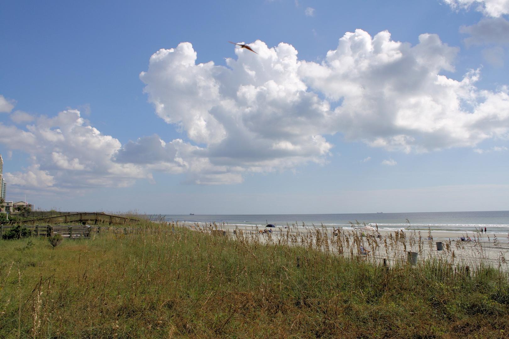 Ocean Bay Club 1405 | Photo