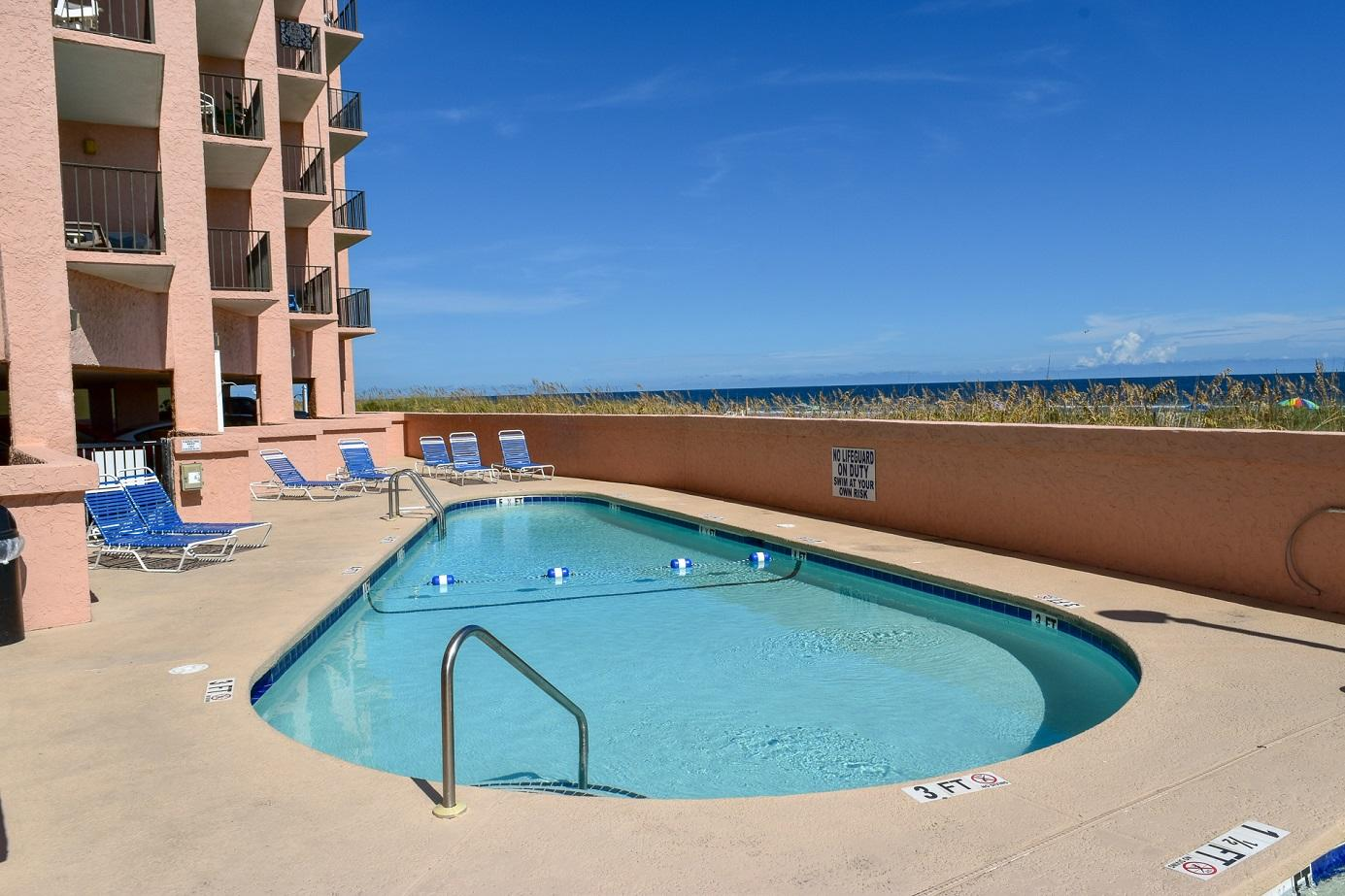 Carolina Reef 206 | Photo
