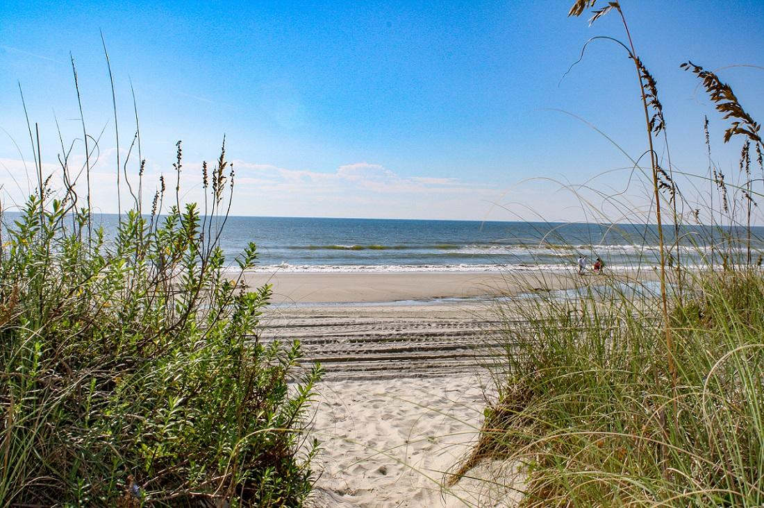 Tilghman Beach & Racquet 260 | Photo