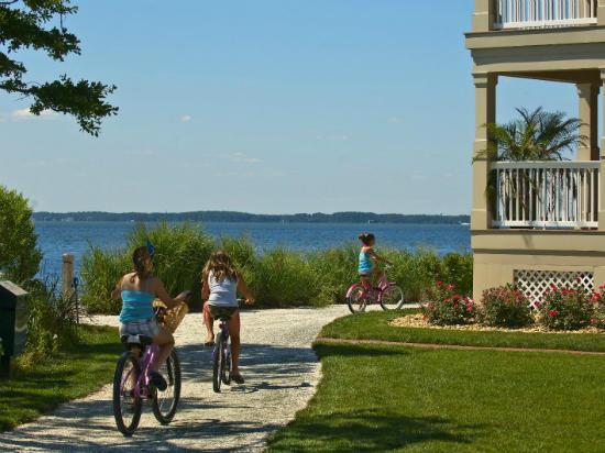 Bayfront Nature Path