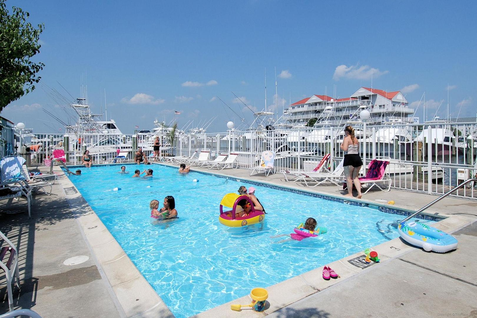 White Marlin - Outdoor Pool (open seasonally)