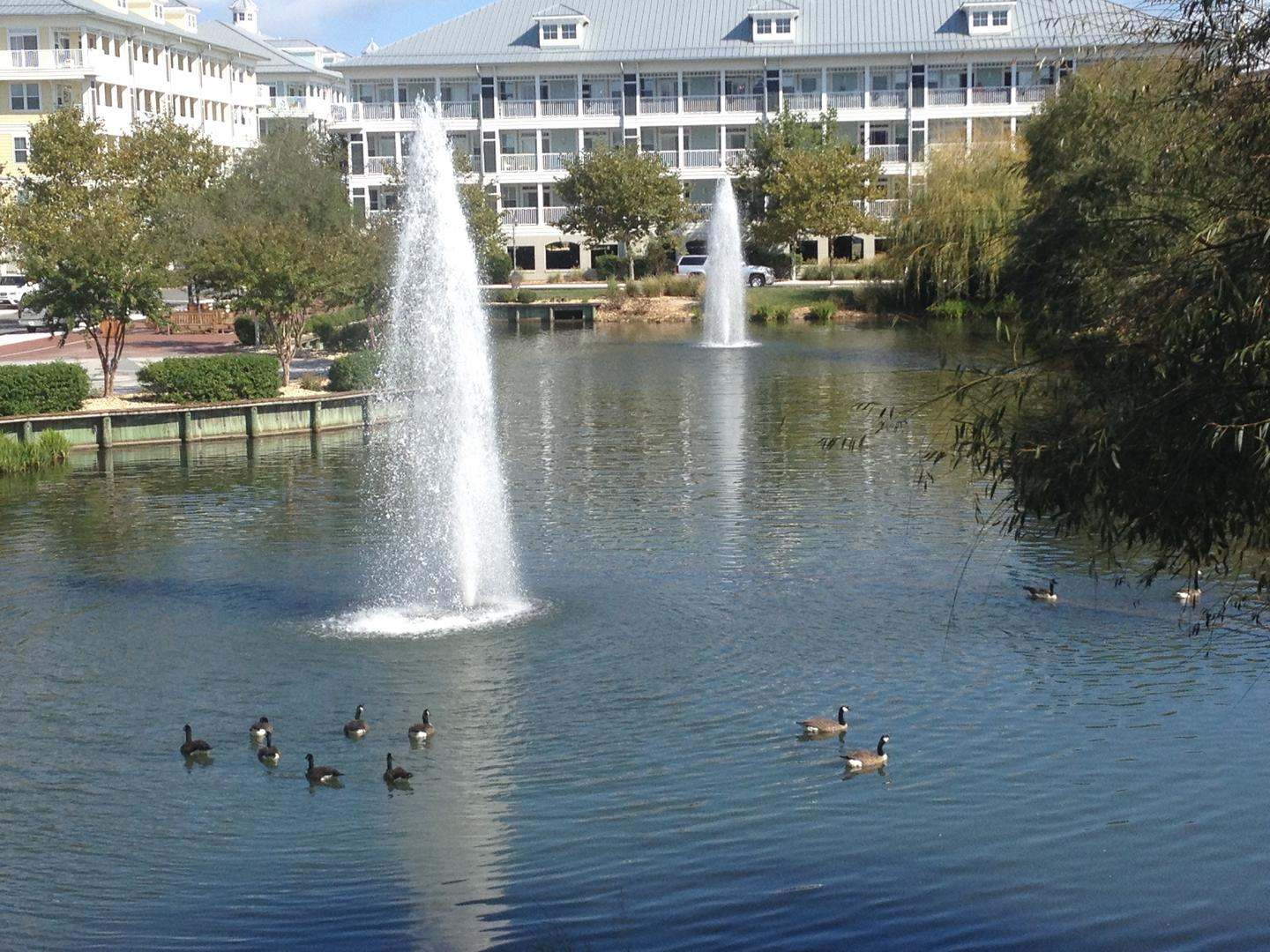 Sunset Island Pond and Fountains