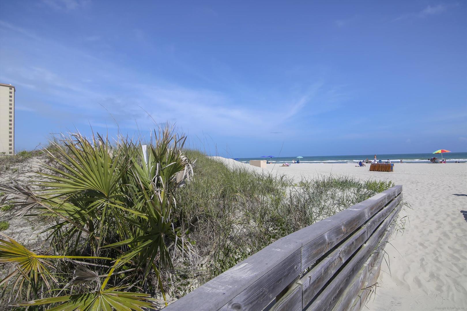 Ocean Creek Beach Area