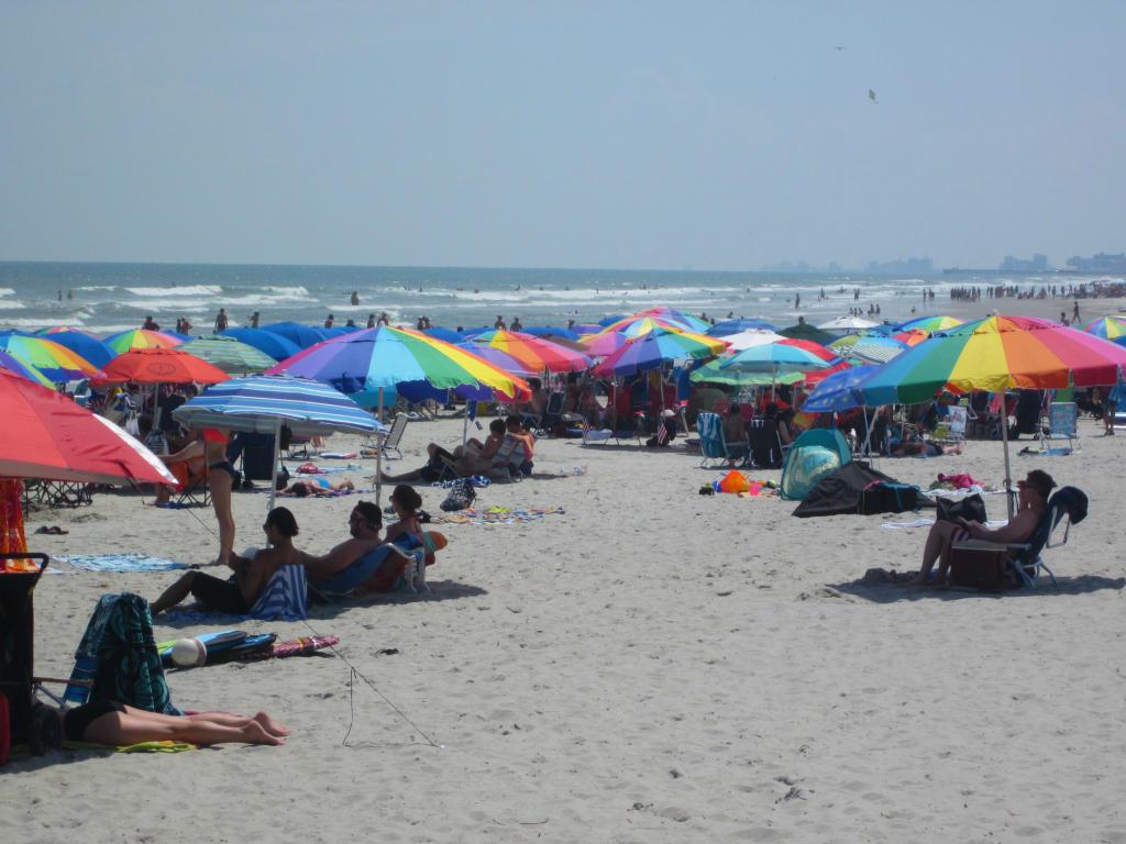 Ocean Creek - Beach