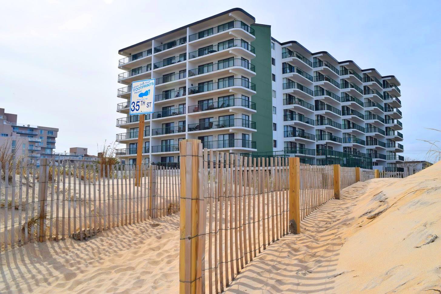 Summer Beach Dune Crossing