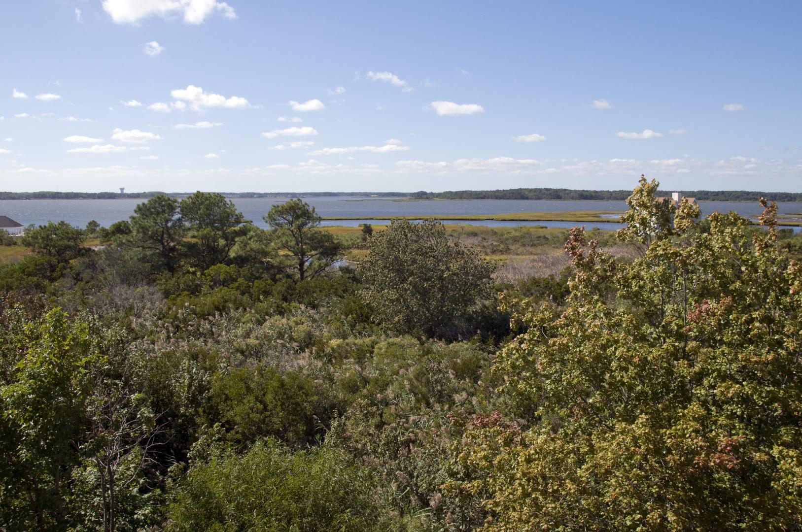 Salt Meadows 40142 - Balcony View