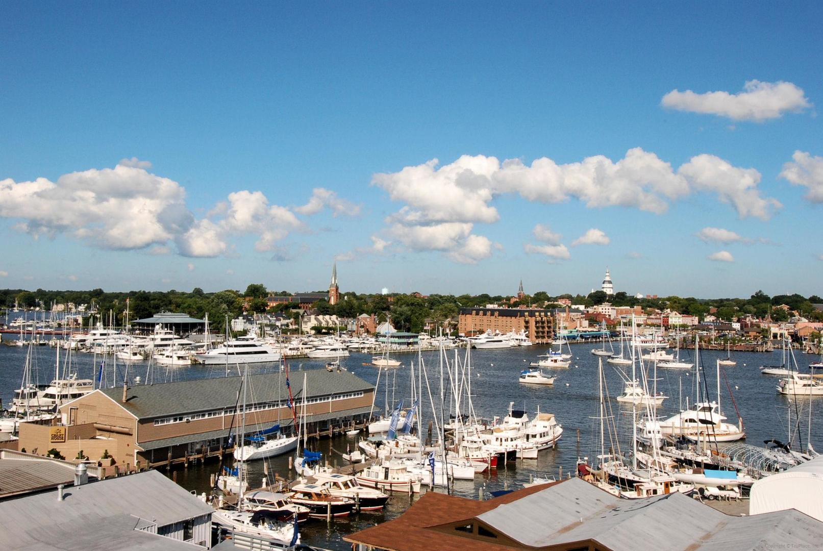Annapolis Harbor and Marina