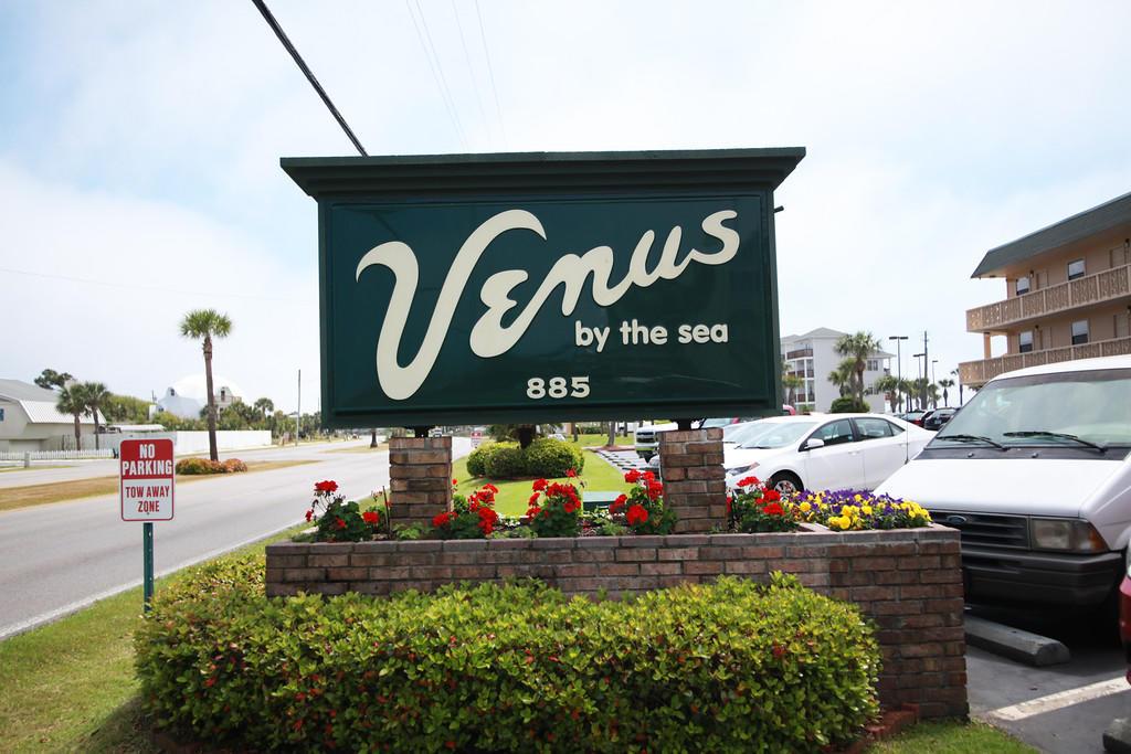 Venus 114-V114